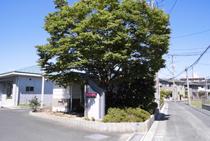 sun_okayama_03